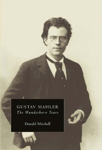 Gustav Mahler: The Wunderhorn Years (Vol 2)